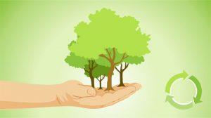 Ini Dia 5 Ide Bisnis Go Green yang Layak Untuk Digeluti