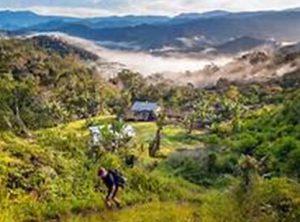Kokoda Track, Papua Nugini
