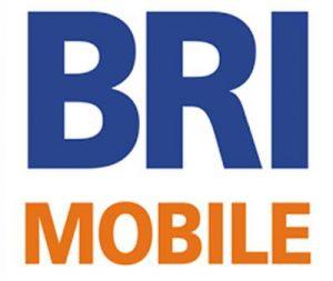 Panduan Membeli Token Listrik Menggunakan Layanan bank BRI